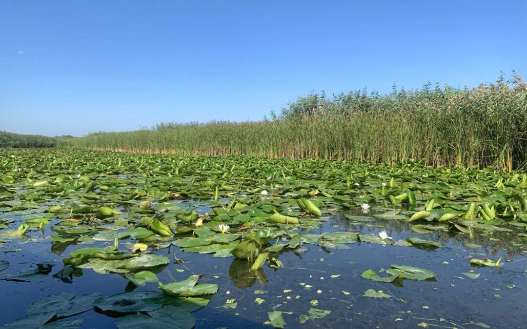 Ce poti face in Delta Dunarii 5 zile?