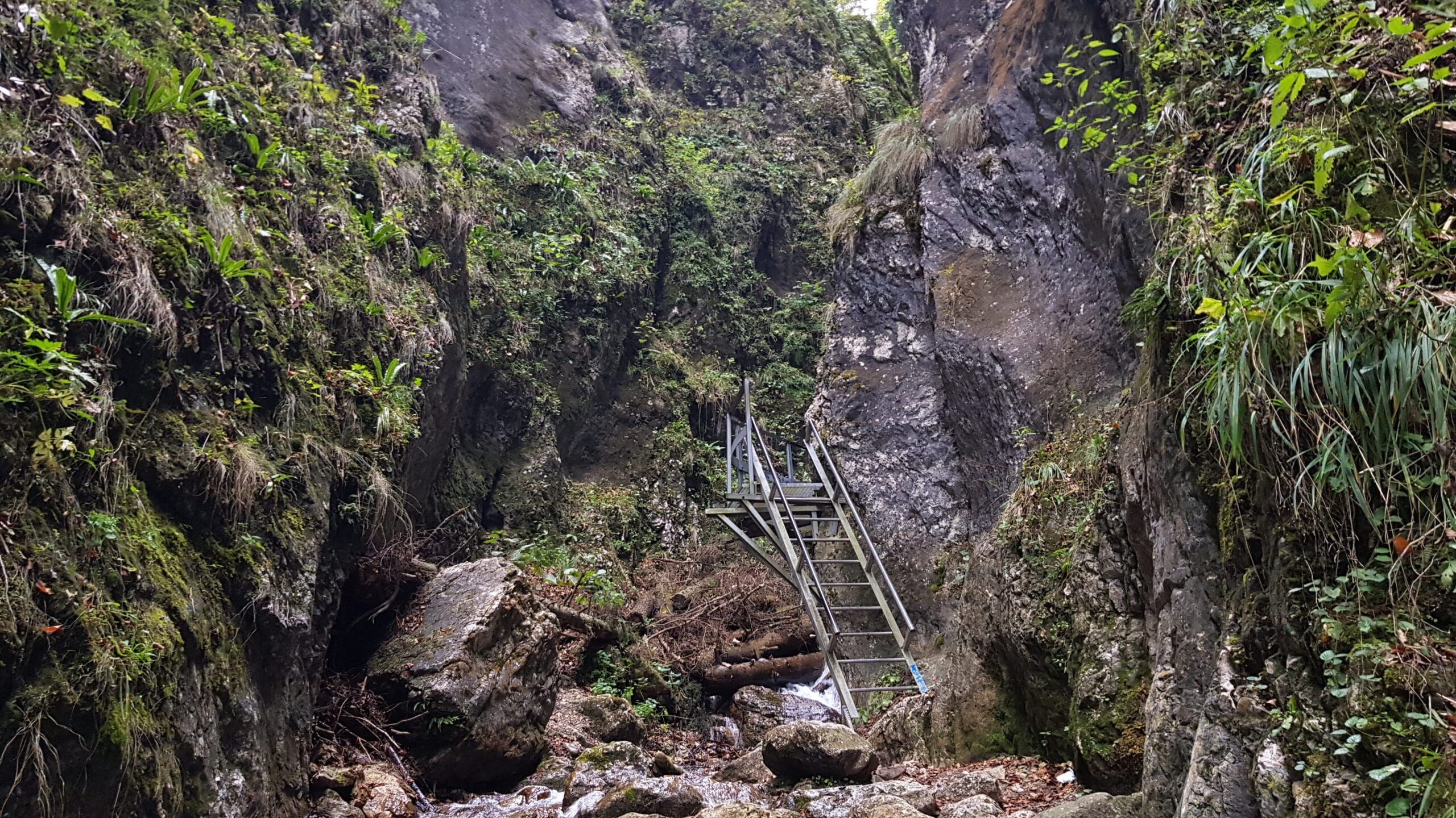 Canionul 7 scari
